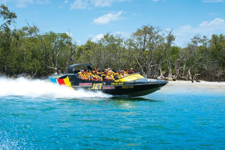 Paradise Jet Boating full with customers on the water speeding pass trees