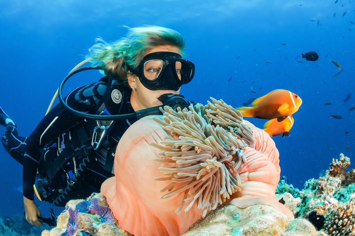 Gold-Coast-Scuba-Diving